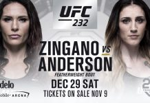 megan andersson vs cat zingano