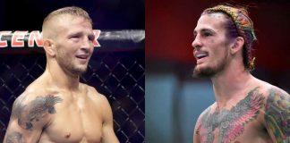 TJ Dillashaw, Sean O'Malley, UFC