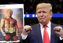 Donald Trump, Boxing