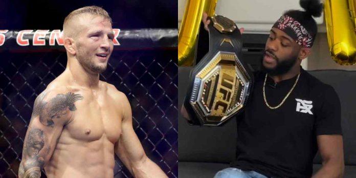 TJ Dillashaw, Aljamain Sterling, UFC